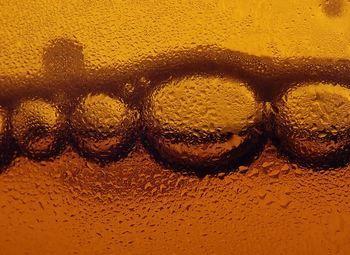 Отдел живого разливного пива
