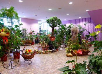 Раскрученный цветочный магазин в центре города
