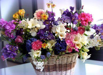 Прибыльный цветочный магазин на Приморской