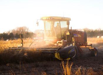Ферма с землёй в собственность