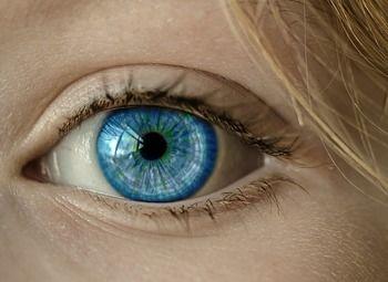 Известная сеть салонов оптики с постоянным доходом