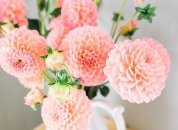 Цветочный магазин с многолетним стажем в престижном районе