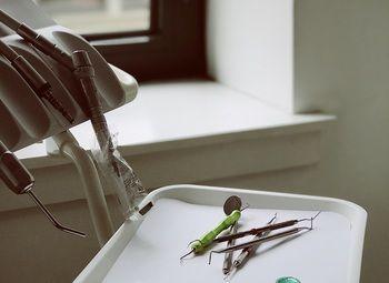 Стоматология со стажем работы 10 лет