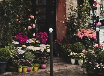 Цветочный магазин с большим оборотом