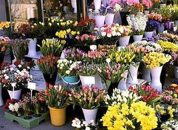 Цветочный магазин в густонаселенном районе с высокой прибылью